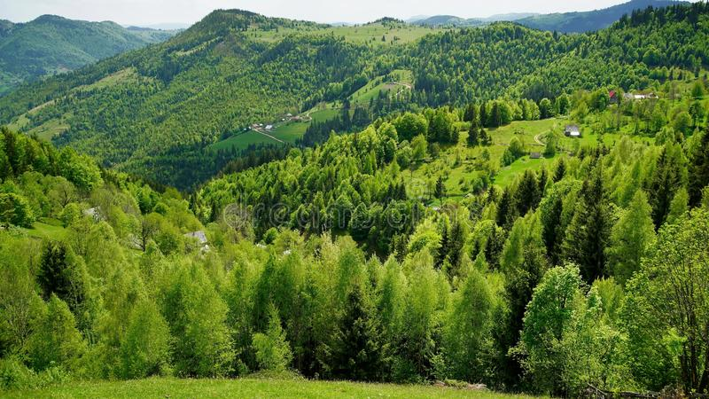 Spring in Apuseni Mountains. A spring landscape in Apuseni mountains, Transylvania royalty free stock photos
