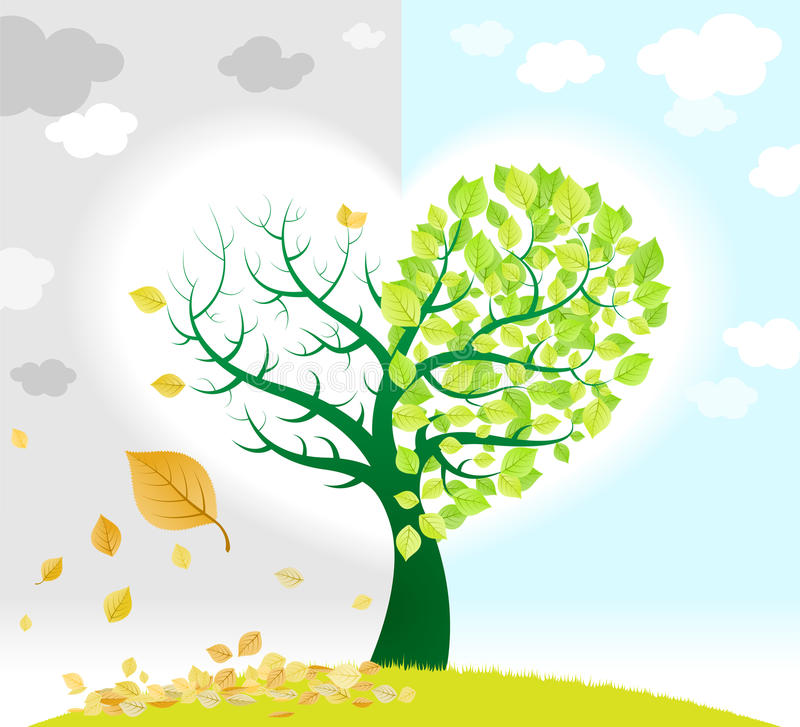 Download Spring and autumn tree stock vector. Illustration of fresh - 22798665