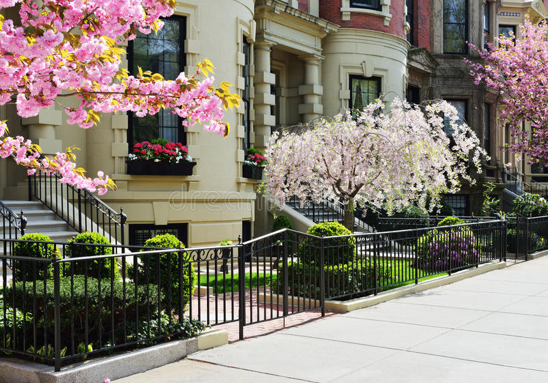 Spring in Back Bay royalty free stock photos