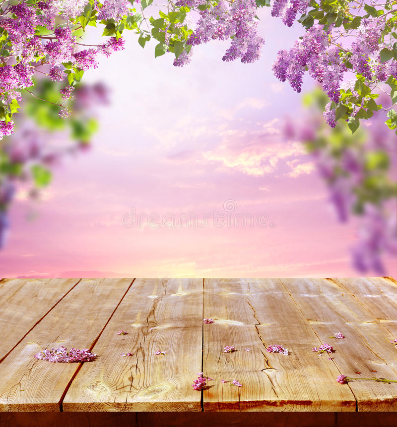 Free Spring Background Royalty Free Stock Photos - 41321068