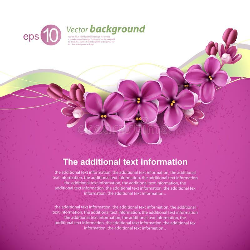 Spring background for the design stock illustration