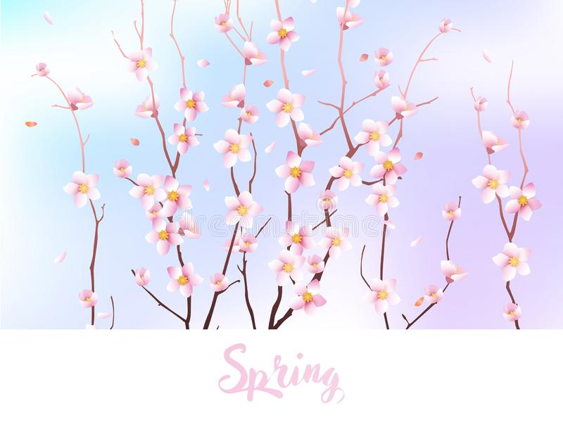 Spring background design with Blooming sakura against the sky royalty free illustration