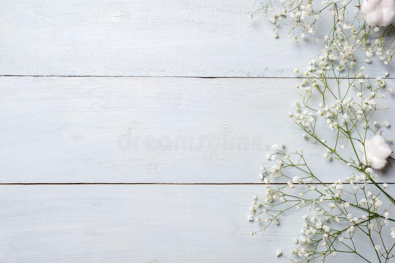 Spring background. White rustic flowers on blue wooden table. Banner mockup for womans or mother day, happy easter, spring holiday stock photos
