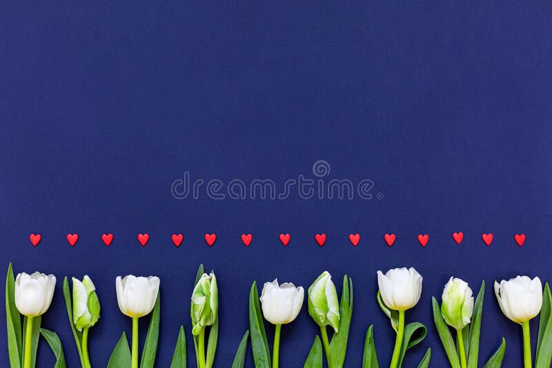 Spring banner.Womans day concept royalty free stock photo