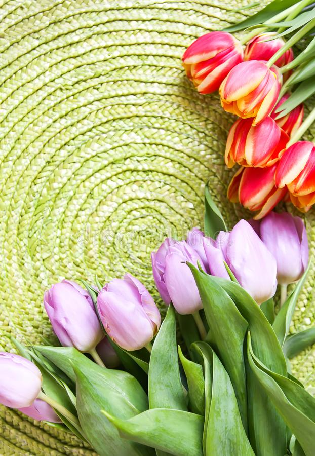 Spring beautiful tulip flowers on green wicker place mat background. Mother's day, greeting card festive decorative floral stock photo