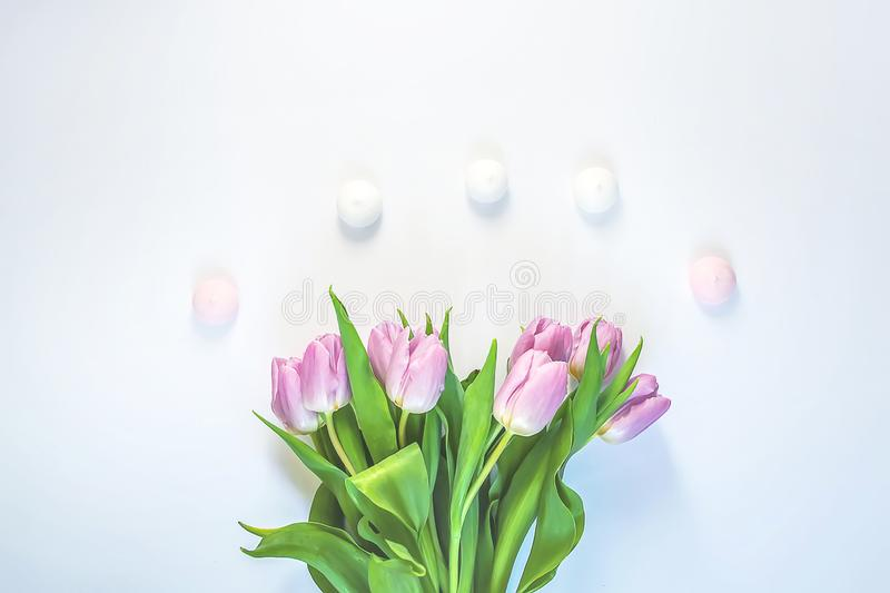 Spring beautiful tulip flowers and meringue cookies on soft white background. Spring beautiful tulip flowers on soft white background with meringue cookies royalty free stock images