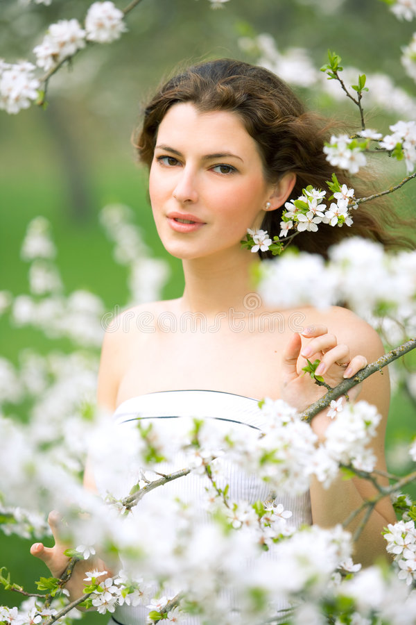 Free Spring Beauty Royalty Free Stock Images - 5229039