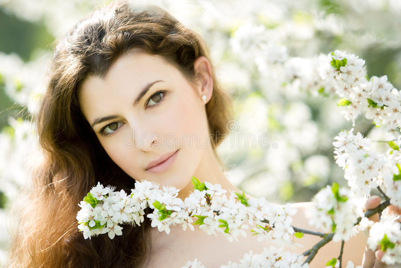 Spring beauty stock images