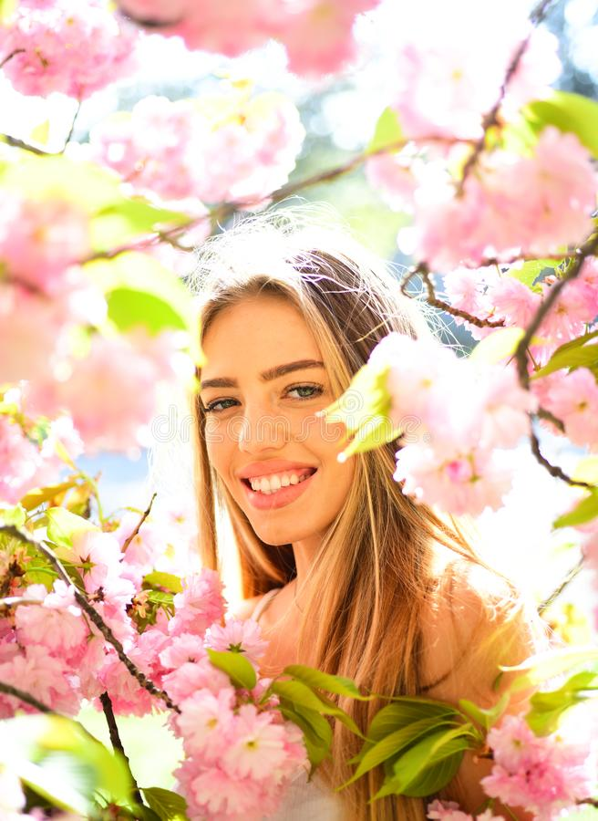 Spring beauty girl with long hair outdoors. Blooming sakura tree. Romantic young woman portrait. royalty free stock image