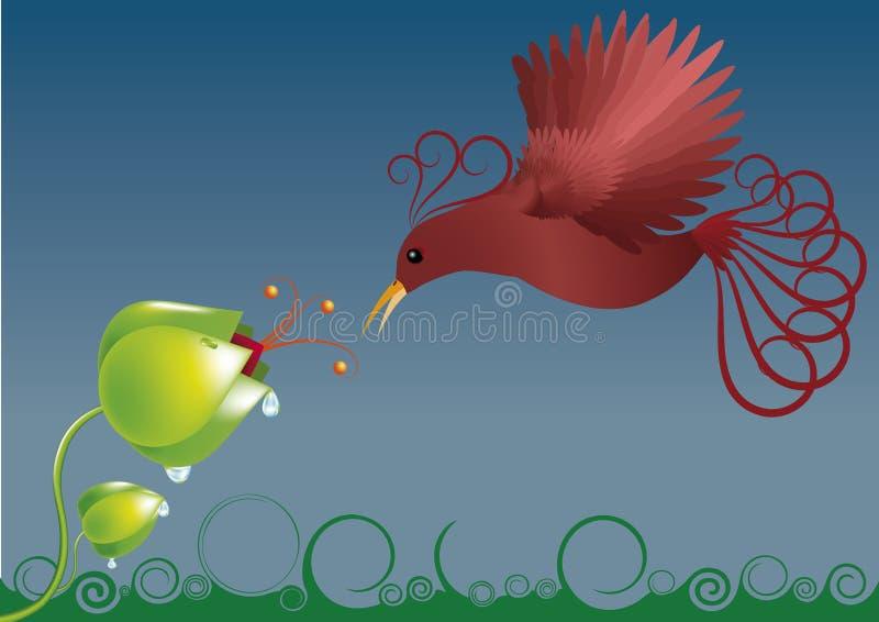 Spring bird. Red bird coming to efflorescent flower royalty free illustration