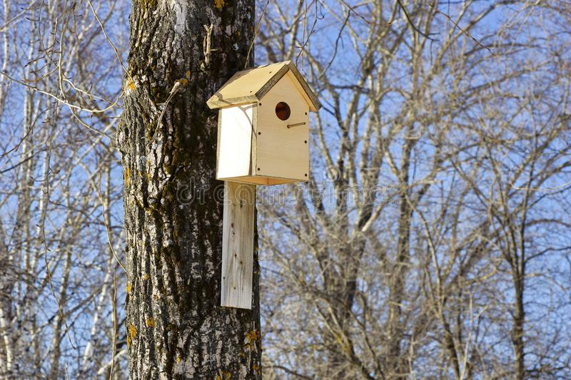 Spring birdhouses on trees in the Park. Concern about urban birds stock photos