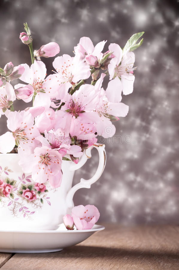 Download Spring Blossom Royalty Free Stock Image - Image: 24445196