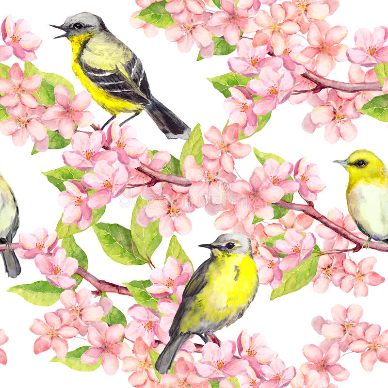 Spring blossom, birds at branches with cherry, apple, sakura flowers . Floral seamless pattern. Watercolor stock illustration