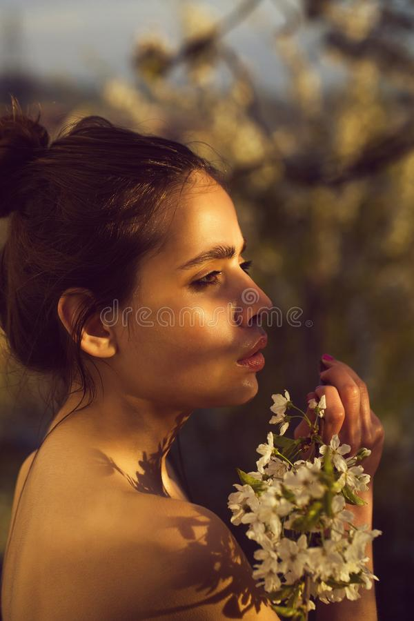 Spring blossom, woman with naked shoulders. Spring blossom, woman or girl with naked shoulders and hair bun with white, blossoming flowers in garden on sunny stock photography