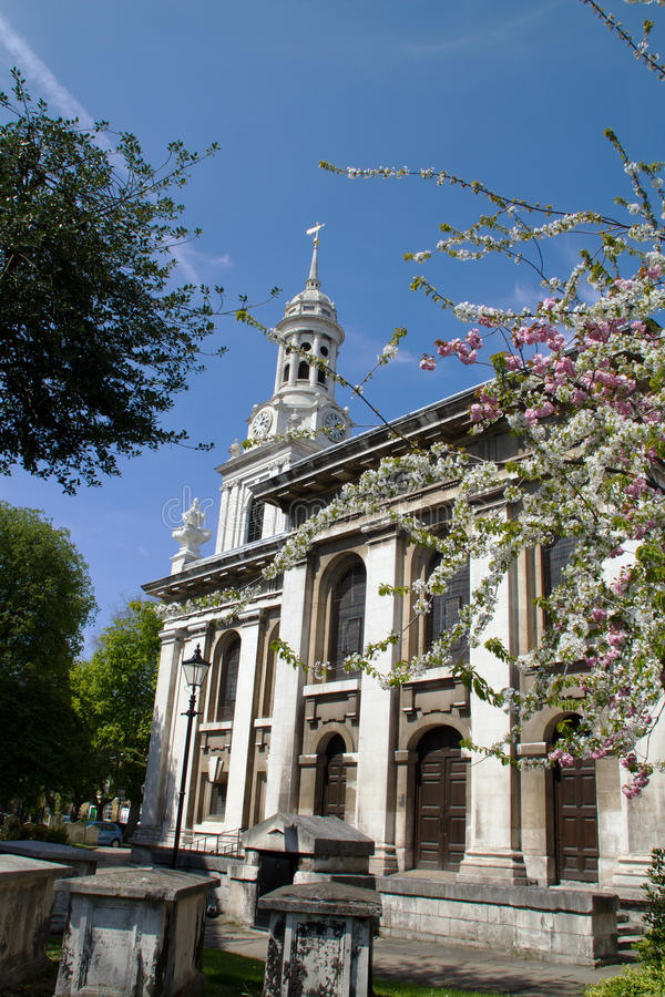 Spring blossoms with Church in background, Greenwich, England royalty free stock image
