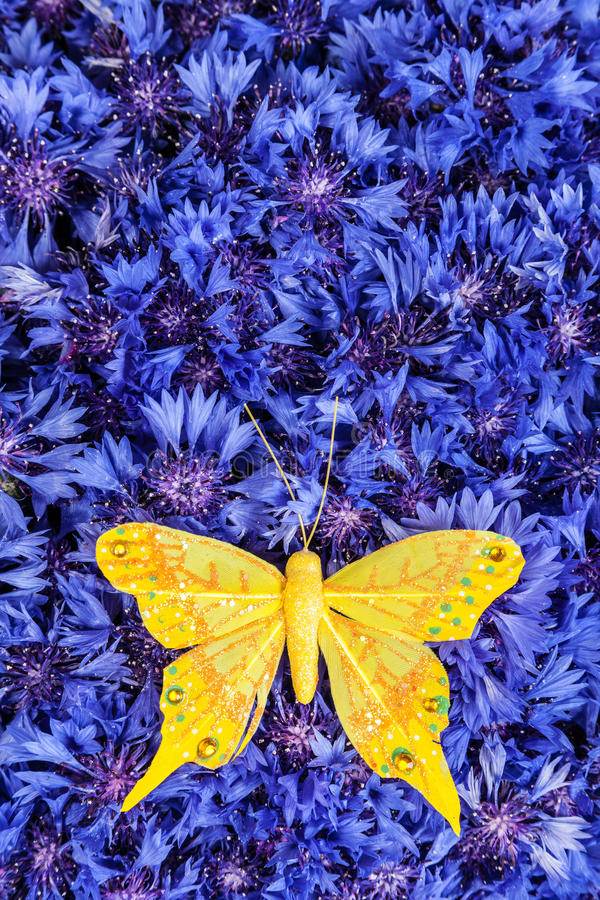 Spring blue cornflower with yellow butterfly. Spring flowers blue cornflower with yellow butterfly wallpaper backdrop royalty free stock photography