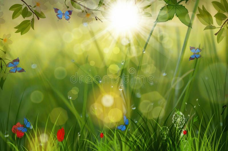 Spring and bookeh vector illustration