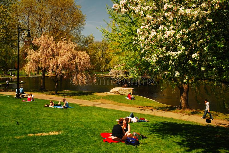 Spring in the Boston Publik Garden. Folks enjoy a warm spring day relaxing on the lawns of the Boston Publik Garden royalty free stock images