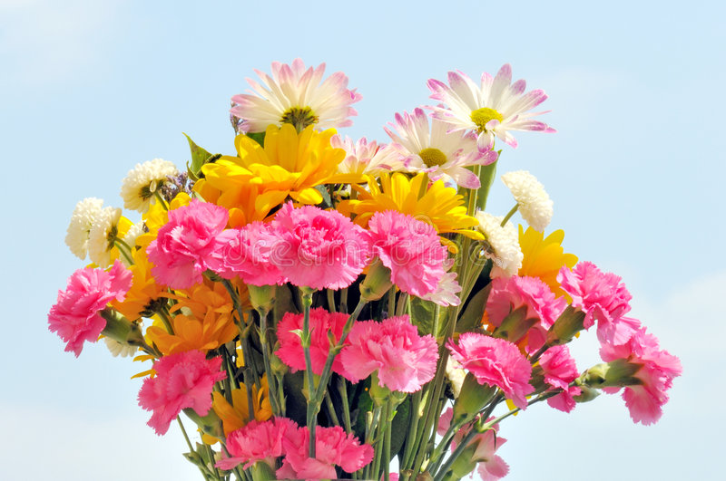 Download Spring bouquet stock image. Image of mixed, happy, cheerful - 4988103
