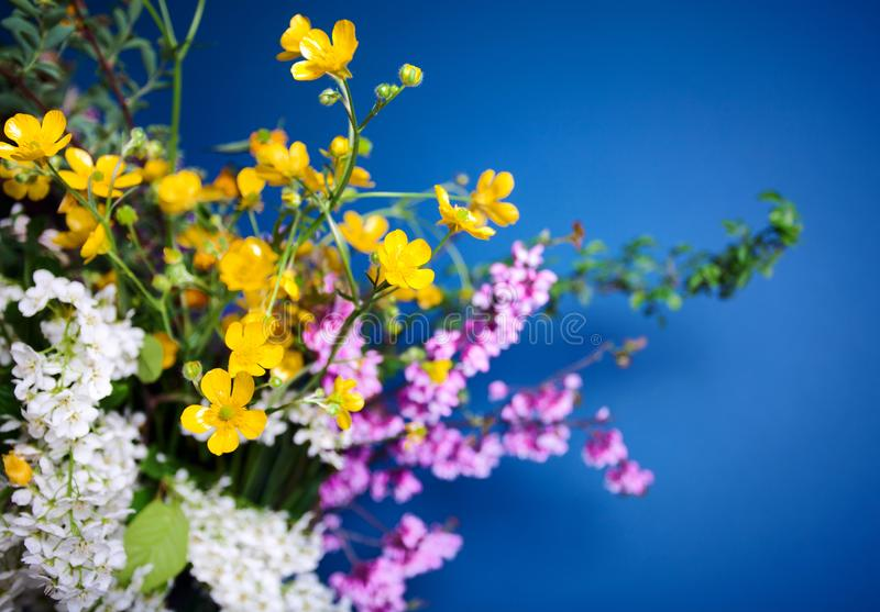 Spring bouquet on blue background stock photo