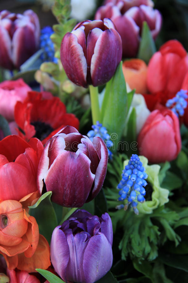 Spring bouquet in bright colors. Spring bouquet with ranunculus, tulips and anemones in bright colors royalty free stock photography