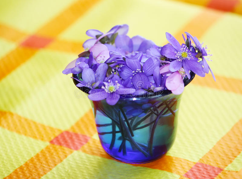 Spring bouquet of flowers. Bright little bouquet of spring fresh flowers stock photography