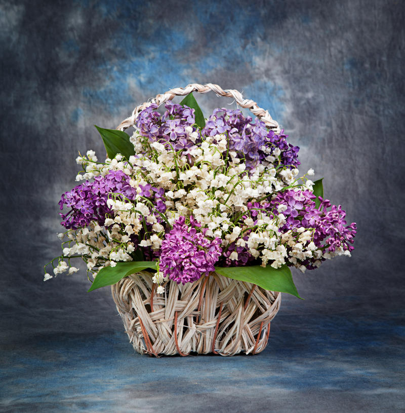 Spring bouquet. Lily of the valley and lilac in a basket royalty free stock photos