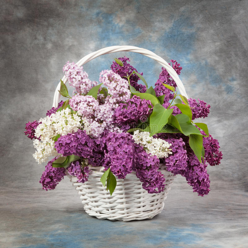 Spring bouquet. Lily of the valley and lilac in a basket royalty free stock photography