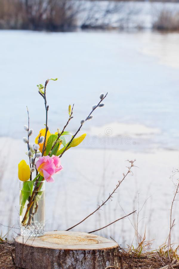 Spring bouquet with tulips and the first spring leaves in a glass cup against the background of landscape with water stock photos