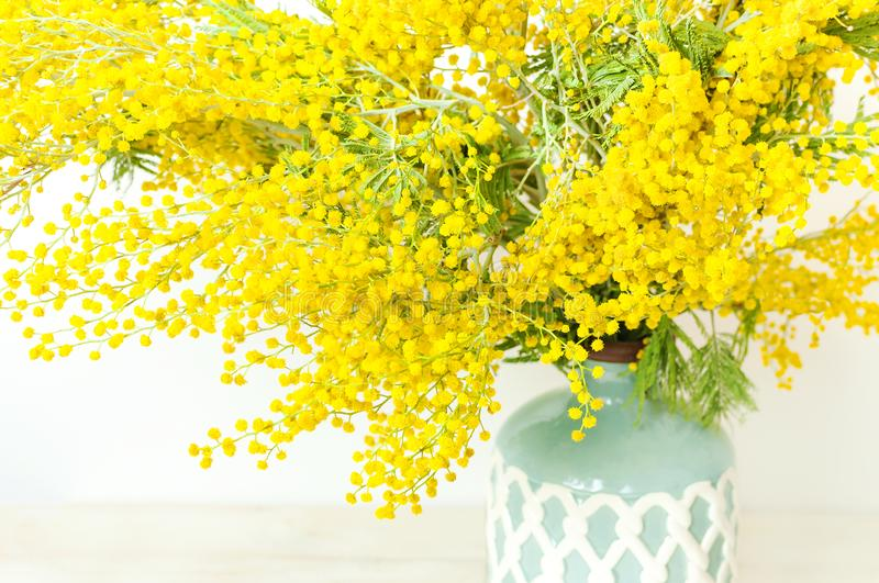 Spring bouquet of yellow mimosa flowers in turquoise vase against the light wall copy space. Gentle composition, concept of spring. Season, symbol of 8 March royalty free stock photos