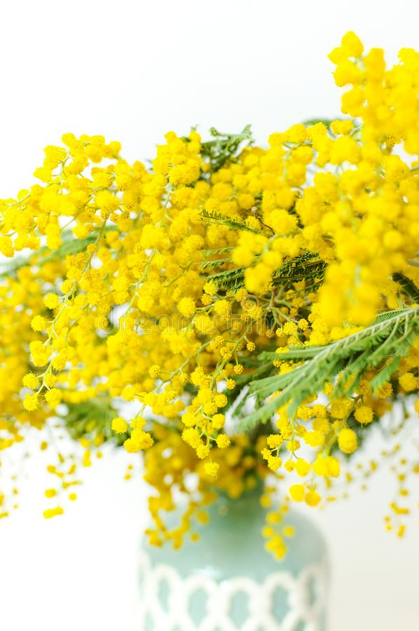 Spring bouquet of yellow mimosa flowers in turquoise vase against the light wall copy space. Gentle composition, concept of spring. Season, symbol of 8 March stock images