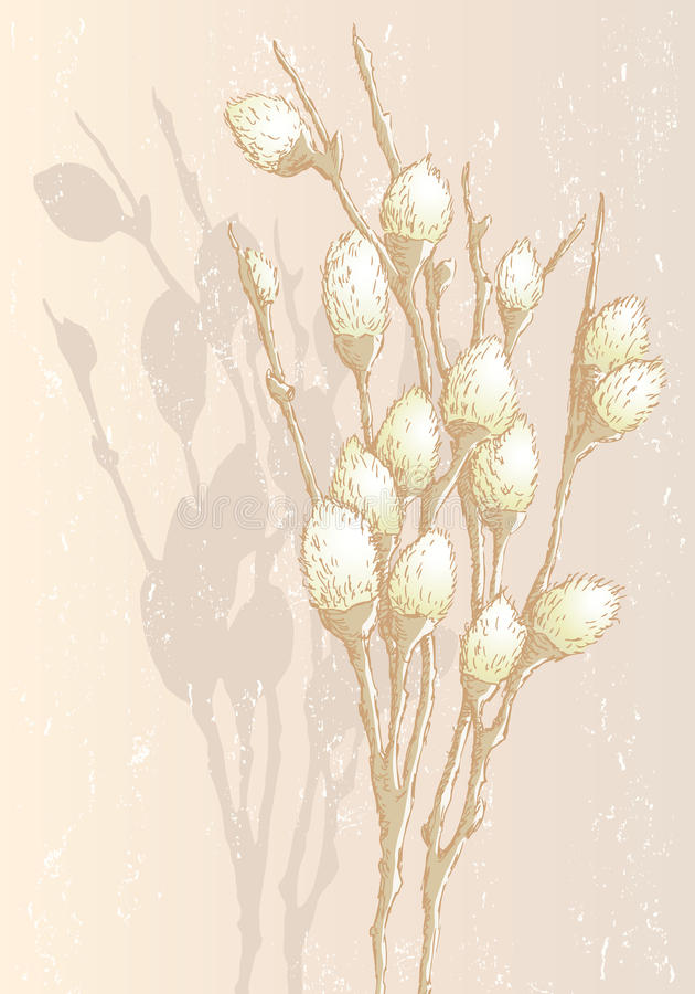 Spring branches royalty free illustration