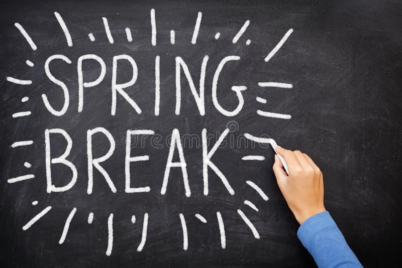 Spring break royalty free stock images