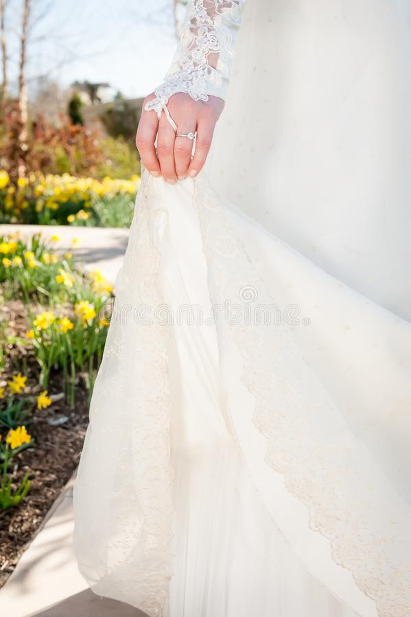 A bride holds up the train of her dress as she walks through a g. A spring bride walks on a path through a garden of daffodils. Her lace sleeve and diamond royalty free stock images