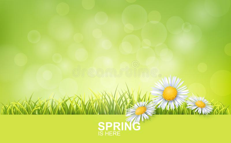 Spring Bright Background vector illustration