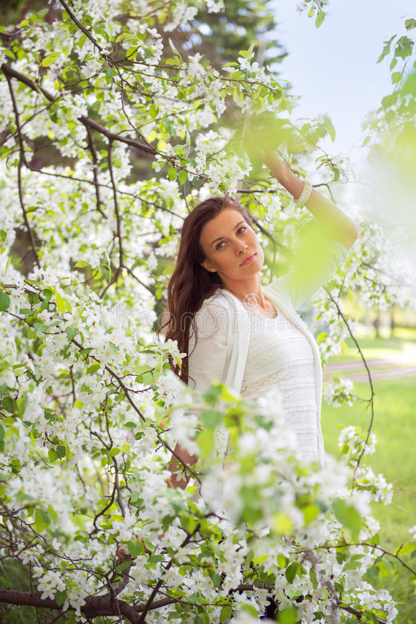 Spring brunette girl standing outdoor in blooming trees. Beautiful romantic woman in apple flowers. Young woman enjoying nature. royalty free stock images