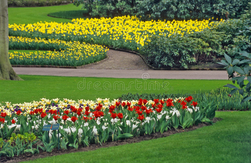 Download Spring Bulb Garden Royalty Free Stock Images   Image: 1341879