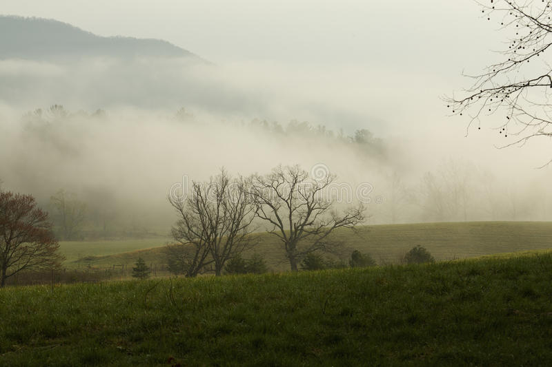 Spring, Cades Cove, Great Smoky Mtns NP stock image