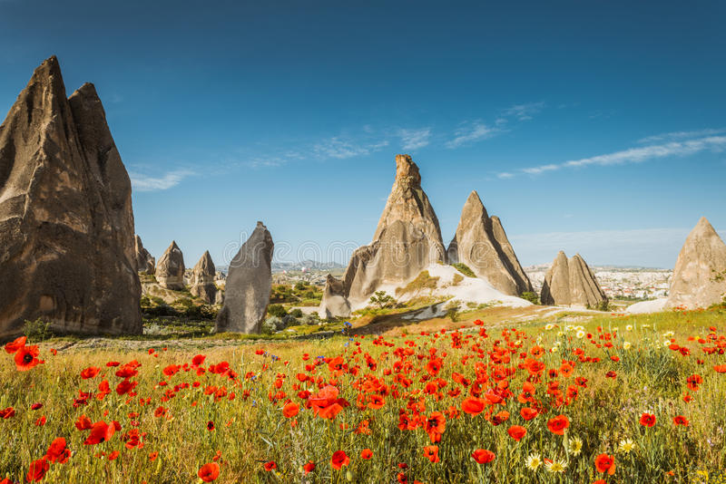 Spring in Cappadocia, Turkey. Rock formations and red flowers stock photography