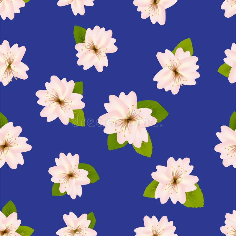 Spring cherry blossoms. Seamless pattern with Japanese sakura. Flowers on blue background. Romantic Vector illustration. royalty free illustration