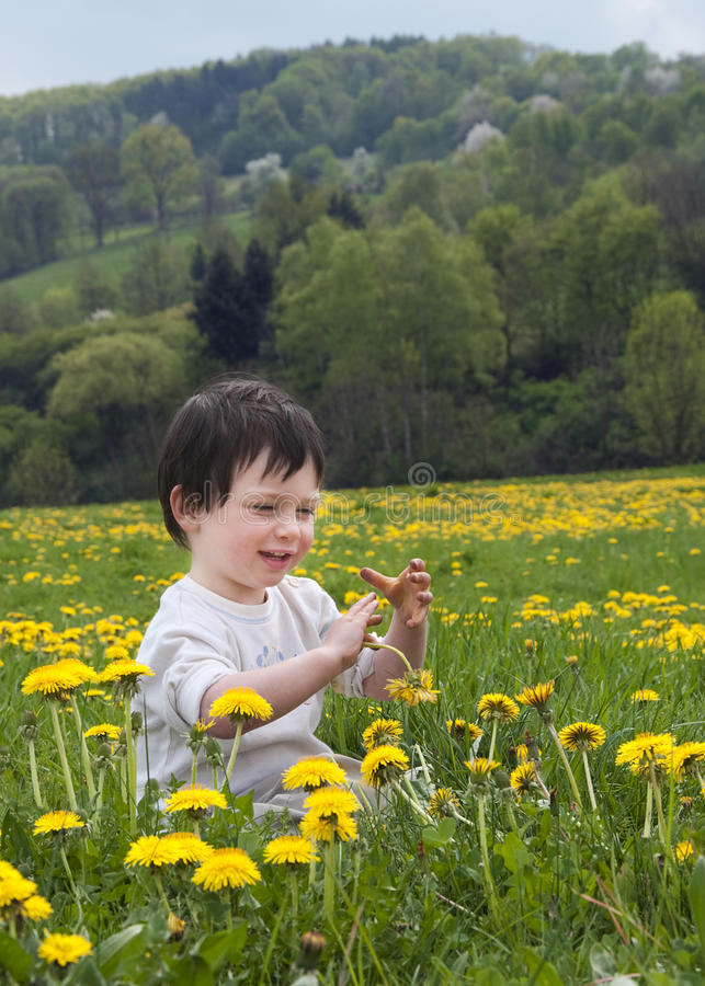 Download Spring child stock photo. Image of childhood, meadow - 24131396