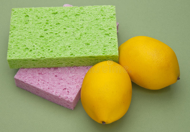 Download Spring Cleaning stock photo. Image of clean, lemon, chore - 14162962