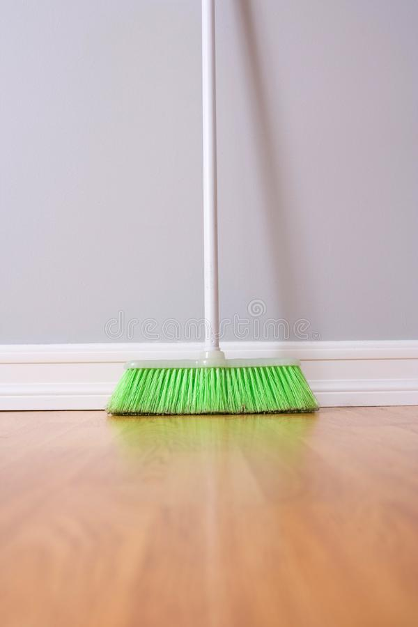 Download Spring Cleaning stock image. Image of hair, lifestyle - 8455081