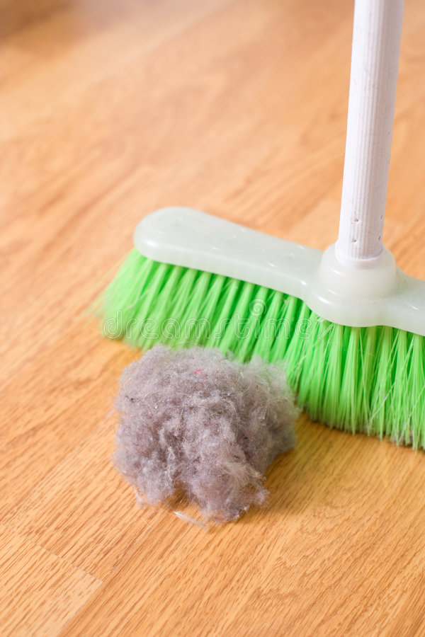 Spring Cleaning. Sweeping large dust bunny on a hardwood floor stock photos