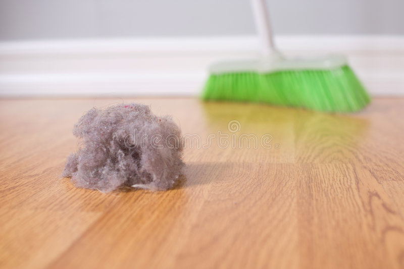 Spring Cleaning. Sweeping large dust bunny on a hardwood floor stock images