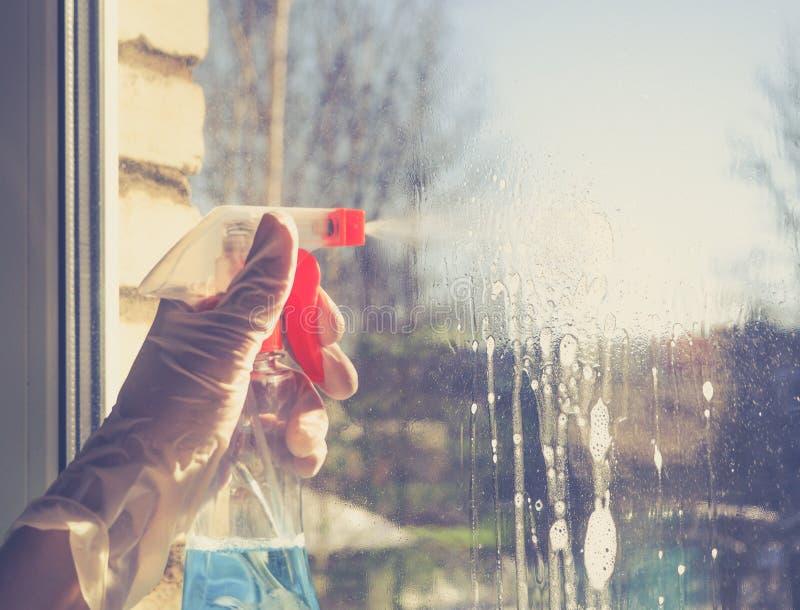 Spring cleaning - janelas da limpeza As mãos do ` s das mulheres lavam a janela, limpando imagens de stock