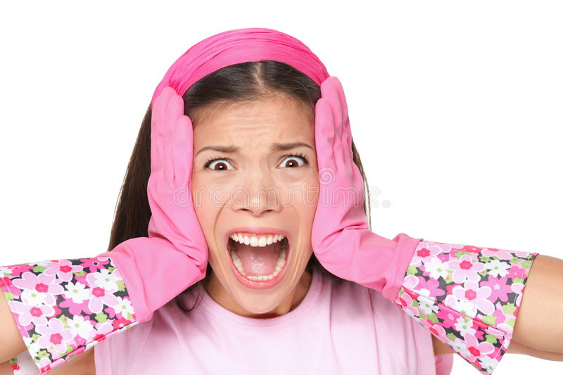 Spring cleaning woman screaming. Funny cleaning lady stressed wearing pink rubber gloves. Cute multiracial female model isolated on white background royalty free stock image