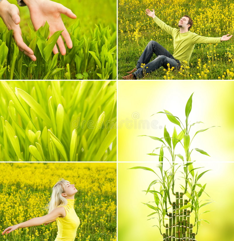 Download Spring collage stock image. Image of hands, beauty, green - 8994573