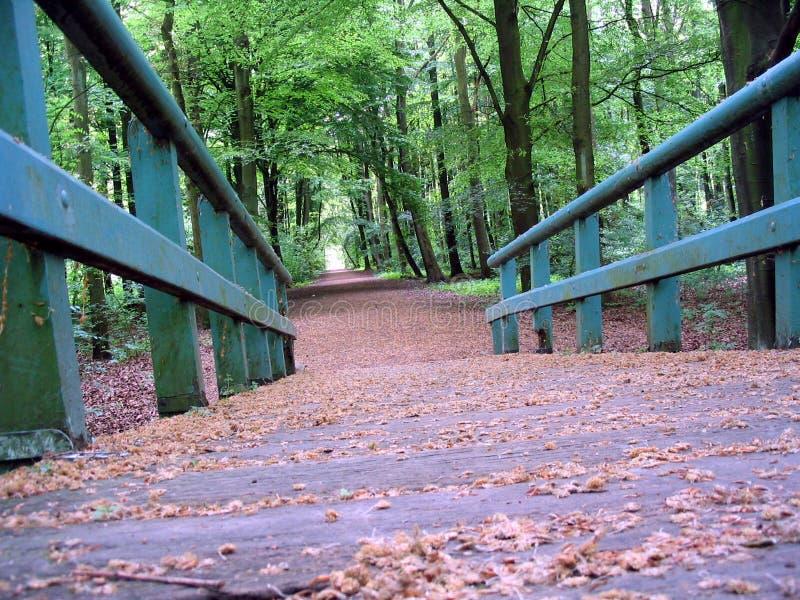 Download Spring Colors stock image. Image of bridge, path, green, wood - 5323