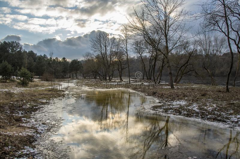 Spring comes to the river bank. Winter ends landscape with trees near river stock photography